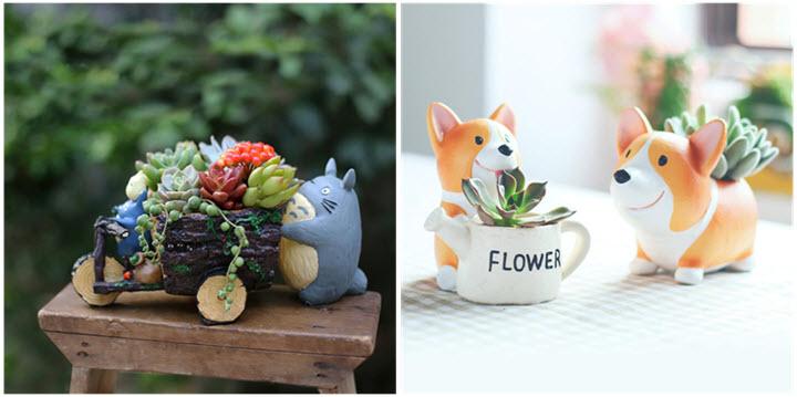 Succulent Planter Pots