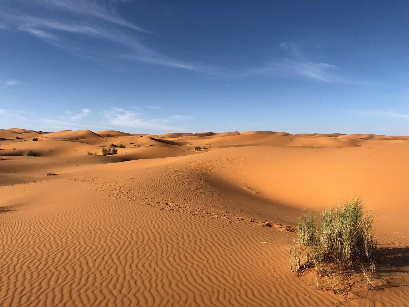 Is Sahara Desert Safe to Travel