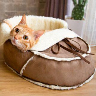 Pet Furniture