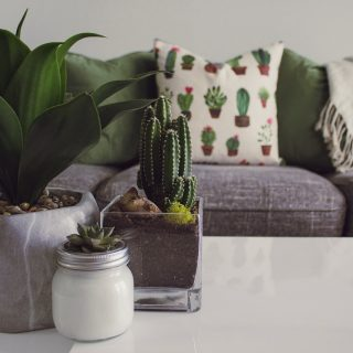 Green Top Up To Tables! Inviting Green Decors