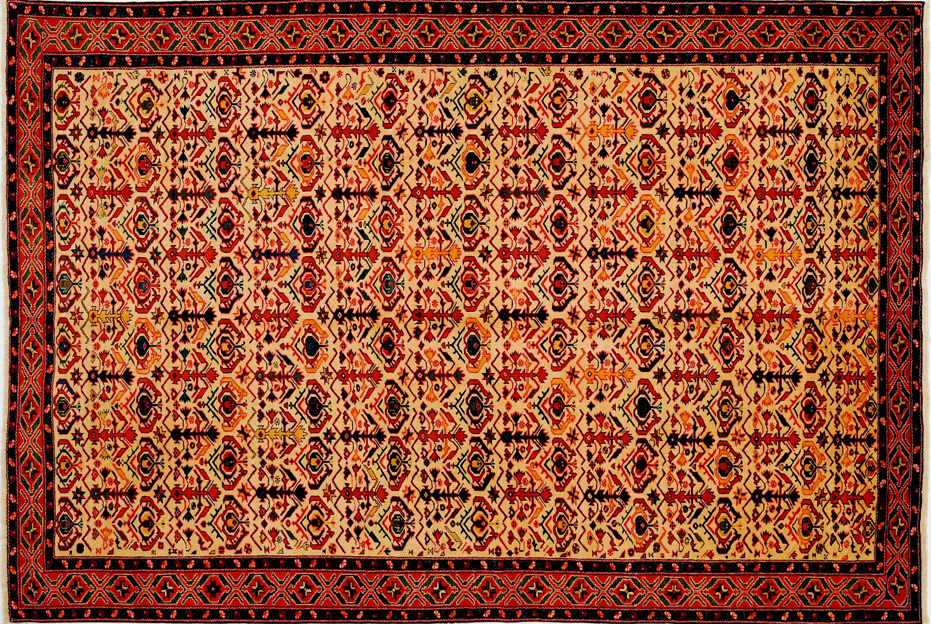 Top 5 Reasons to Get a Hand-Knotted Rug for Your Home