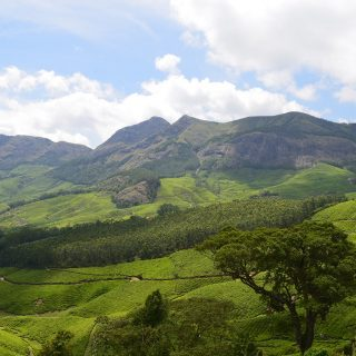 Enjoy the Beautiful Landscape of Wayanad from Lakkidi View Point