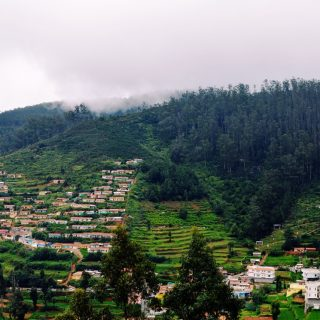 4 Reasons Why Monsoon is the Best Time to Explore Ooty with Family