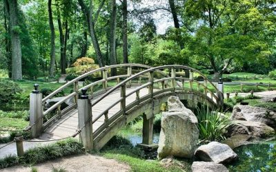 Top Must Have Features for Your Garden