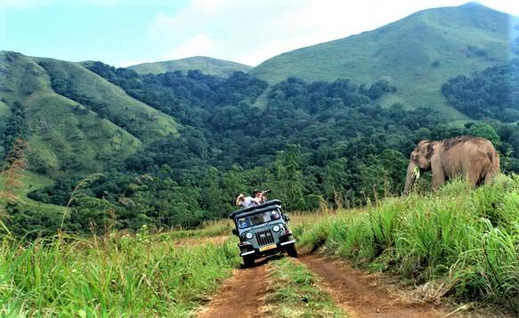 Thekkady Jeep Safari