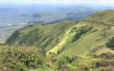 Weekend Trip from Bangalore to Chikmagalur