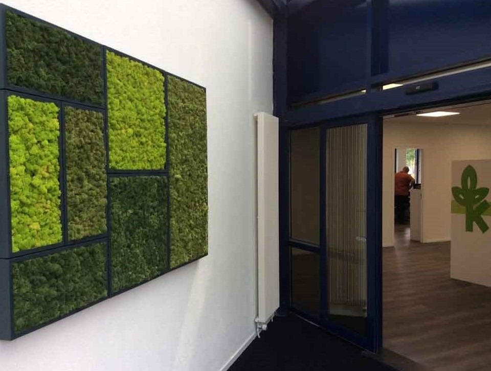 Nature at your Space with BioMontage Walls