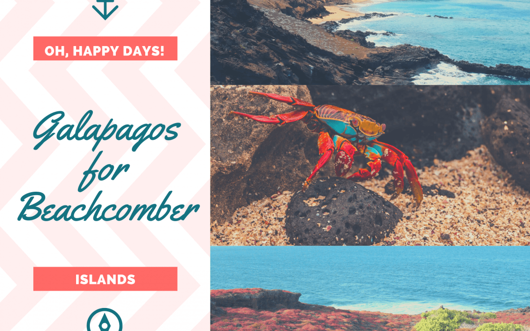 A Beachcomber! Then Galapagos is for You