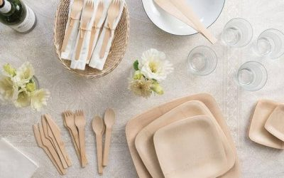 6 Best Biodegradable Plates