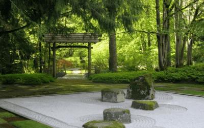How to Create the Perfect Zen Rooftop Garden