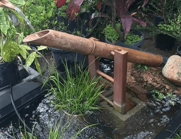 Zen Rooftop Garden