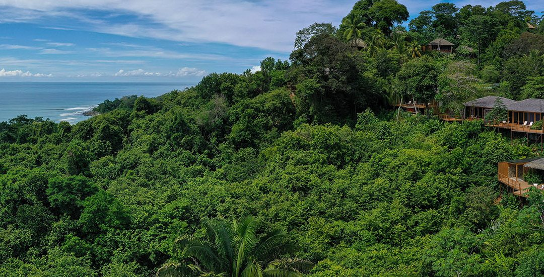 The Thriving Examples of Sustainable Tourism