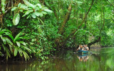 Celebrate a Greener Earth by opting for Eco Friendly Tours